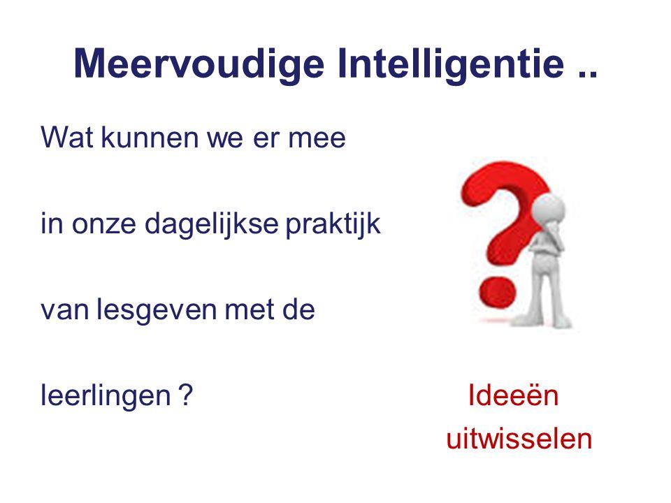 Meervoudige Intelligentie..