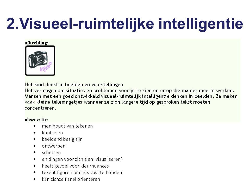 2.Visueel-ruimtelijke intelligentie