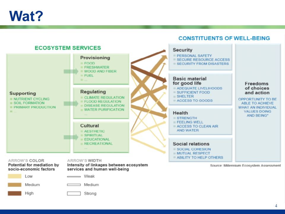 5 Type of benefitEcosystem service Forest reserve Ecosystem Water supply Forest products Provisioning services Hazard protection Carbon sequestration Regulating services Aesthetic quality Cultural services Recreation Species conservation Tourism Supporting services Source: van Beukering (2010)