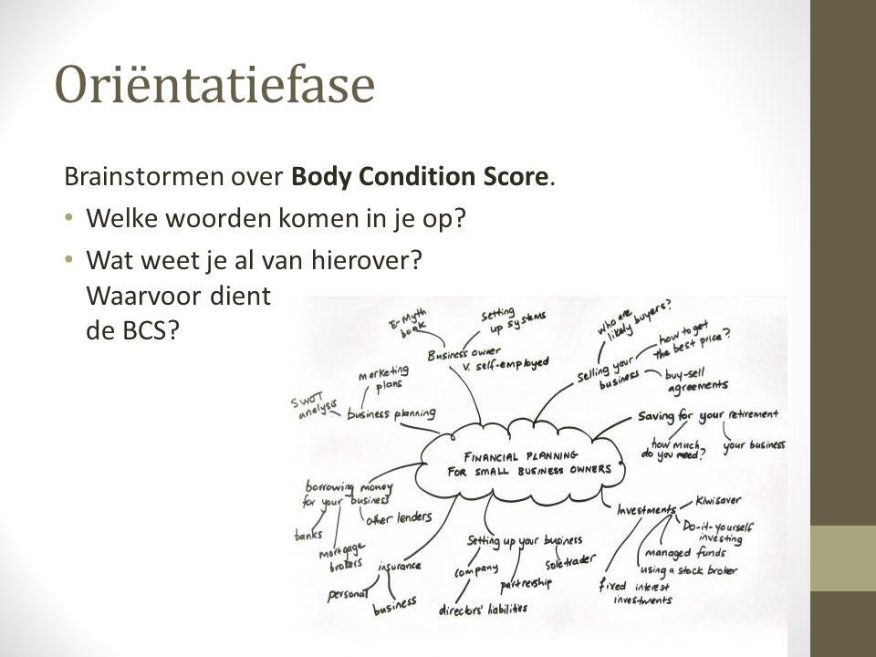 Oriëntatiefase Brainstormen over Body Condition Score. Welke woorden komen in je op? Wat weet je al van hierover? Waarvoor dient de BCS?