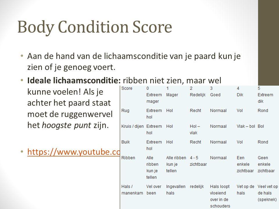 Body Condition Score Aan de hand van de lichaamsconditie van je paard kun je zien of je genoeg voert. Ideale lichaamsconditie: ribben niet zien, maar