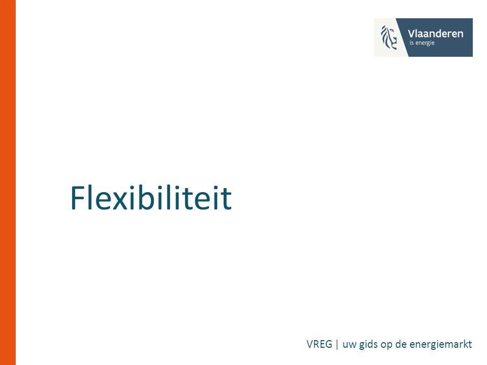 Flexibiliteit VREG | uw gids op de energiemarkt