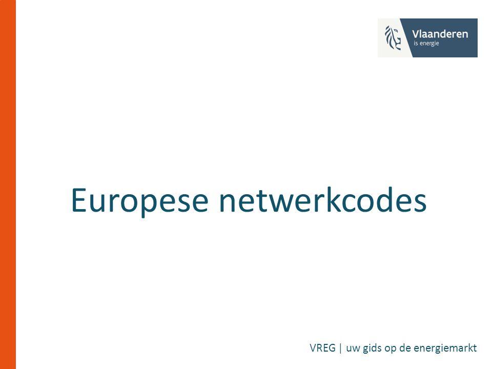 Europese netwerkcodes VREG | uw gids op de energiemarkt