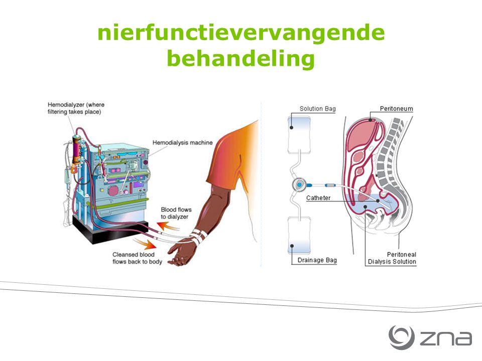 nierfunctievervangende behandeling