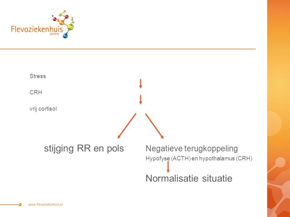 Stress CRH vrij cortisol stijging RR en pols Negatieve terugkoppeling Hypofyse (ACTH) en hypothalamus (CRH) Normalisatie situatie
