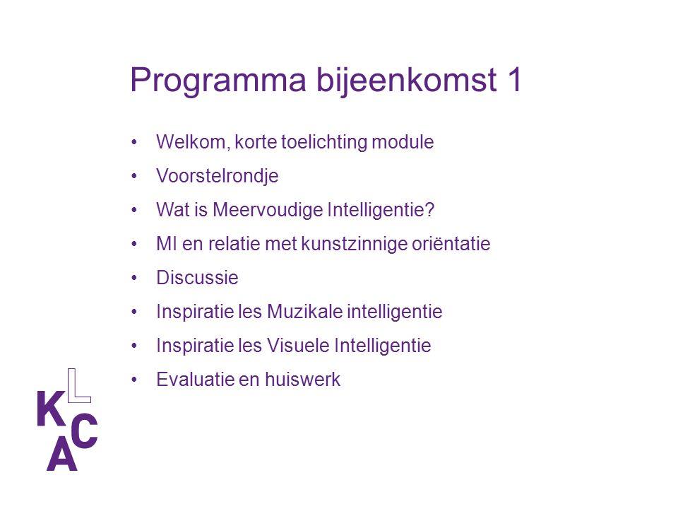 Opdracht 1 -Inventariseer concrete ervaringen met meervoudige intelligentie op jouw school.