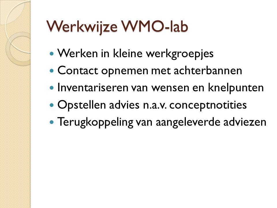 Werkwijze WMO-lab Werken in kleine werkgroepjes Contact opnemen met achterbannen Inventariseren van wensen en knelpunten Opstellen advies n.a.v.