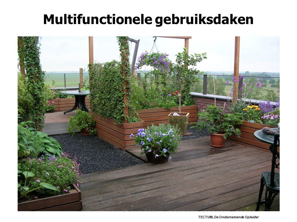 Multifunctionele gebruiksdaken TECTUM, De Ondernemende Opleider