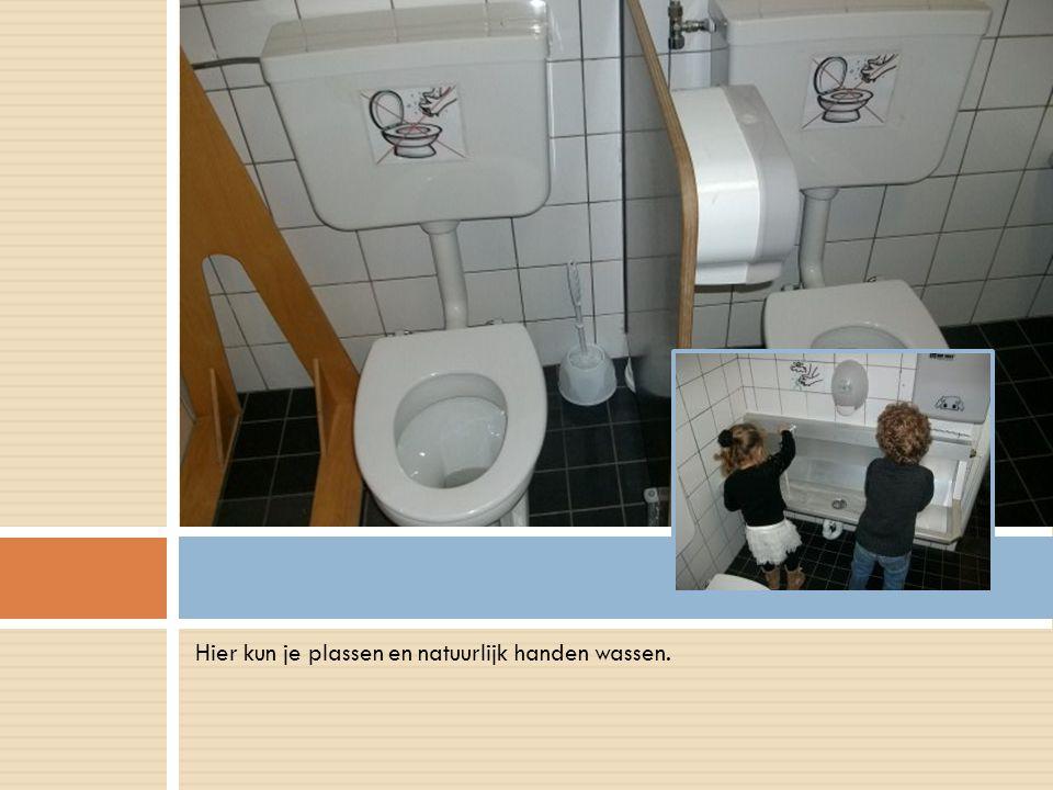 Hier kun je plassen en natuurlijk handen wassen..