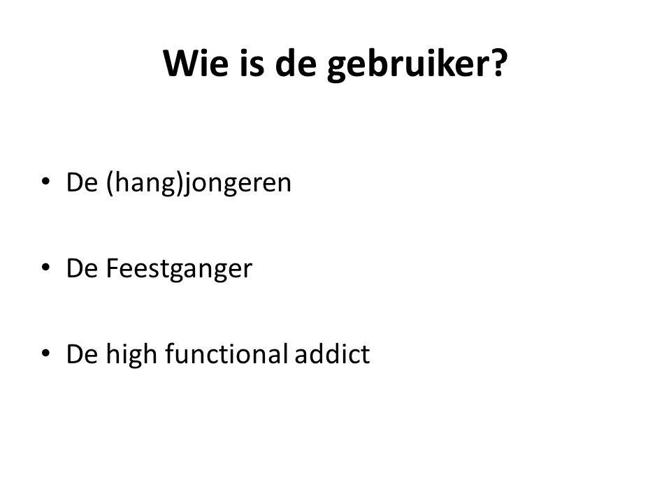 Wie is de gebruiker De (hang)jongeren De Feestganger De high functional addict