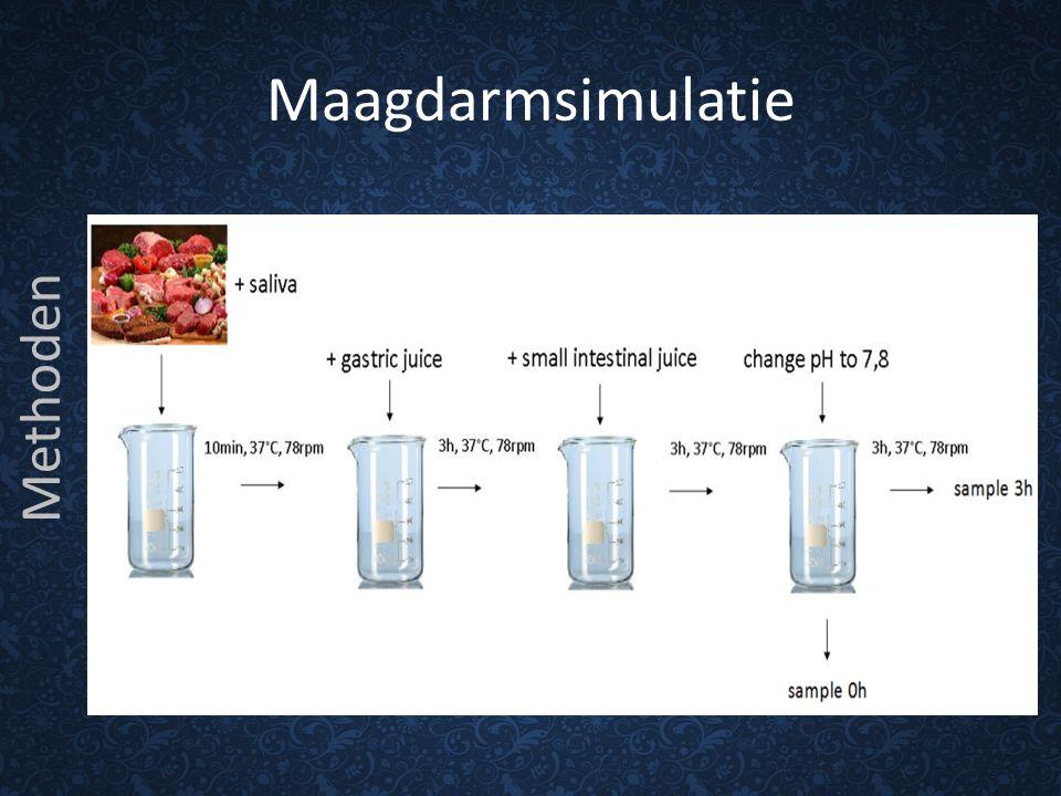 Maagdarmsimulatie Methoden