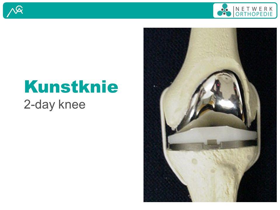 Kunstknie 2-day knee