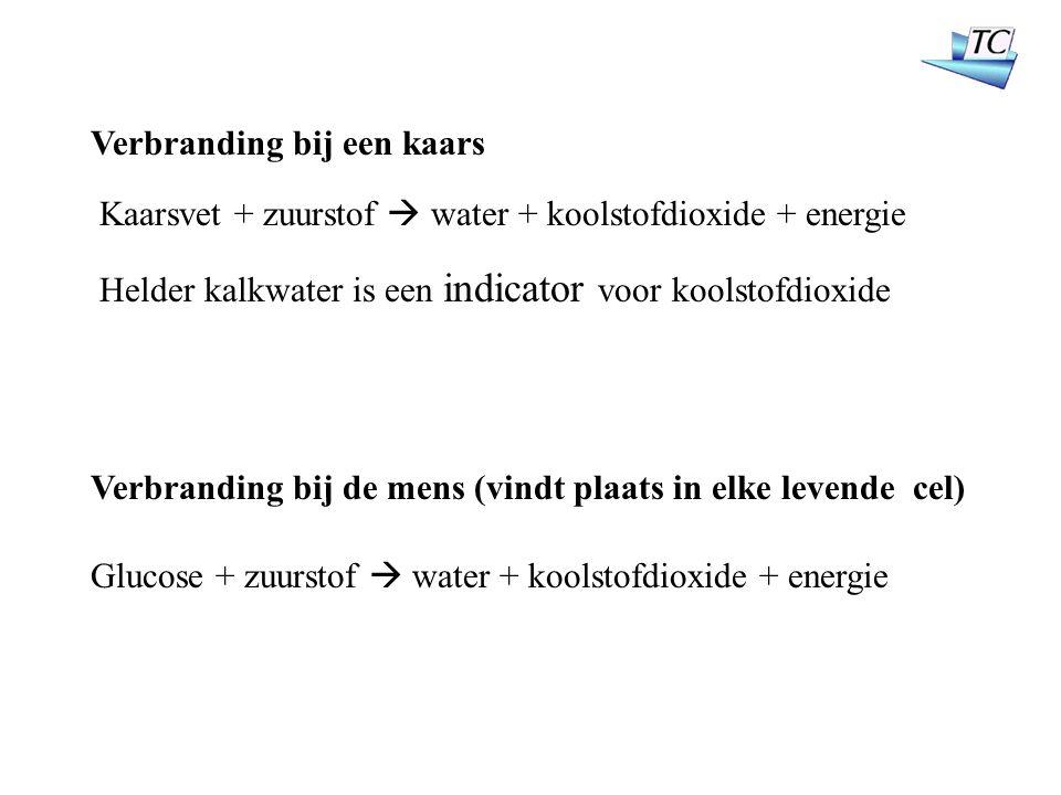 Verbranding bij een kaars Kaarsvet + zuurstof  water + koolstofdioxide + energie Glucose + zuurstof  water + koolstofdioxide + energie Verbranding bij de mens (vindt plaats in elke levende cel) Helder kalkwater is een indicator voor koolstofdioxide