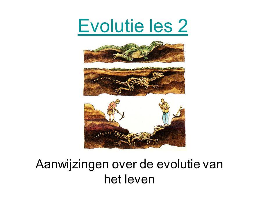 Evolutie les 2 Aanwijzingen over de evolutie van het leven