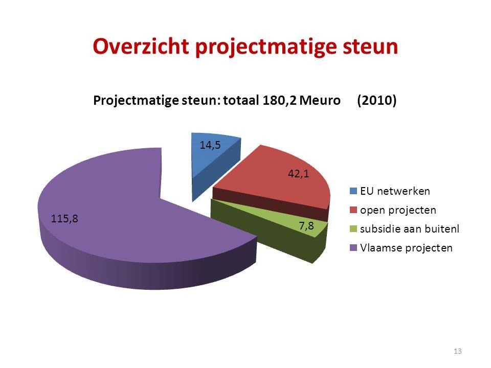Overzicht projectmatige steun 13