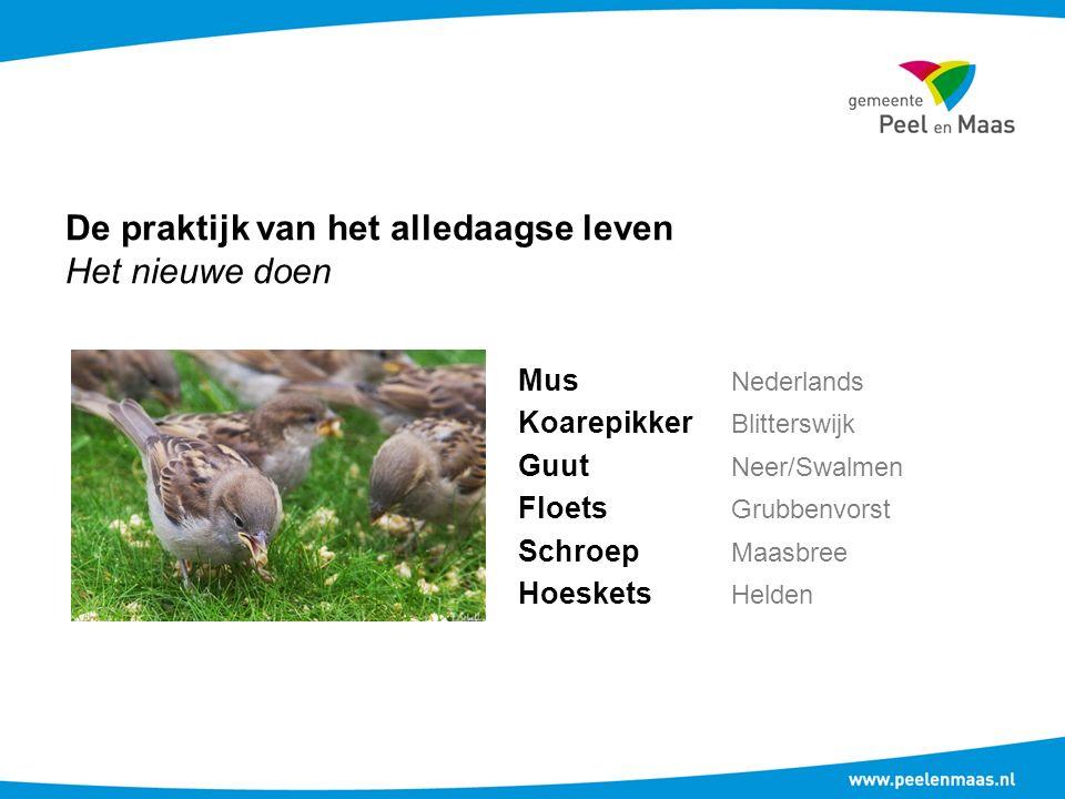 De praktijk van het alledaagse leven Het nieuwe doen Mus Nederlands Koarepikker Blitterswijk Guut Neer/Swalmen Floets Grubbenvorst Schroep Maasbree Ho