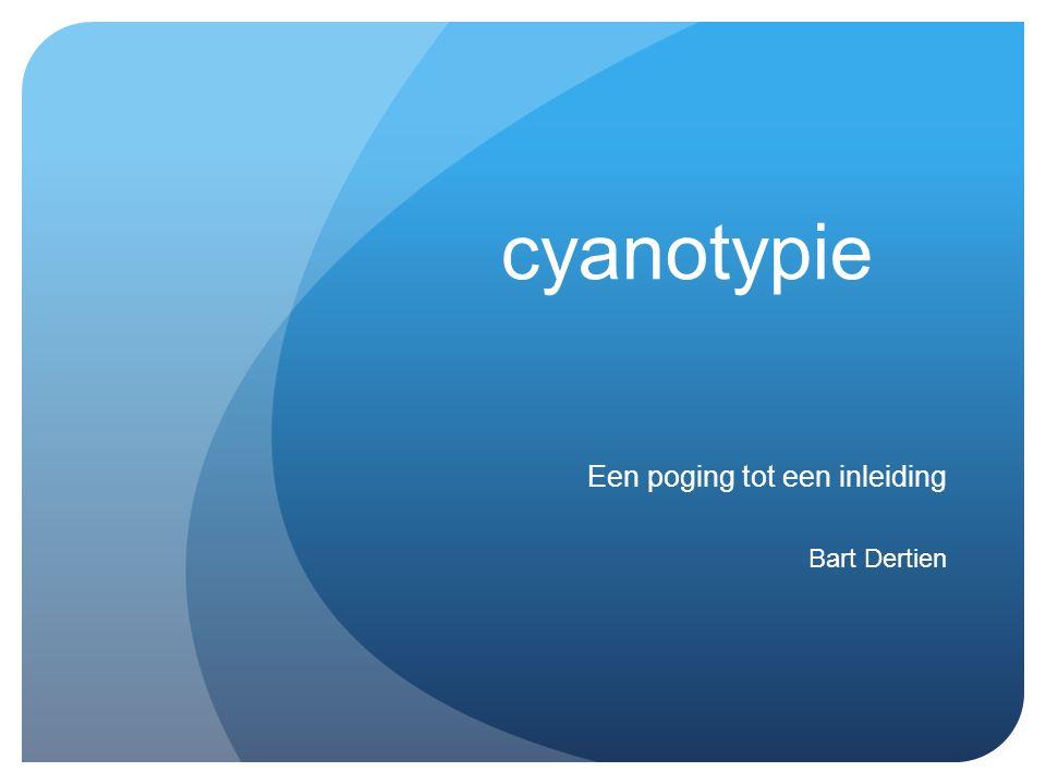 cyanotypie Een poging tot een inleiding Bart Dertien