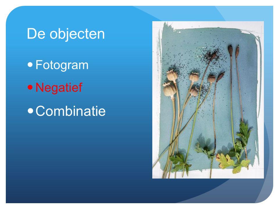 De objecten Fotogram Negatief Combinatie