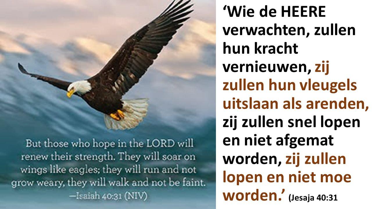 'Wie de HEERE verwachten, zullen hun kracht vernieuwen, zij zullen hun vleugels uitslaan als arenden, zij zullen snel lopen en niet afgemat worden, zij zullen lopen en niet moe worden.' (Jesaja 40:31