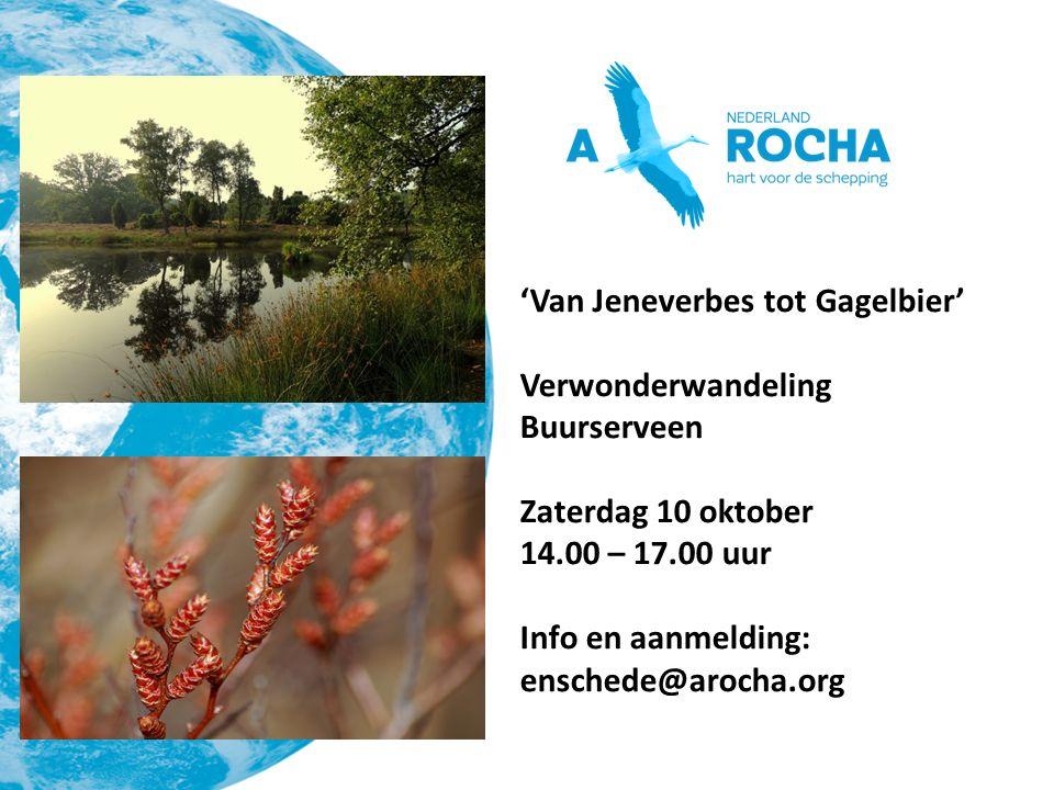 'Van Jeneverbes tot Gagelbier' Verwonderwandeling Buurserveen Zaterdag 10 oktober 14.00 – 17.00 uur Info en aanmelding: enschede@arocha.org