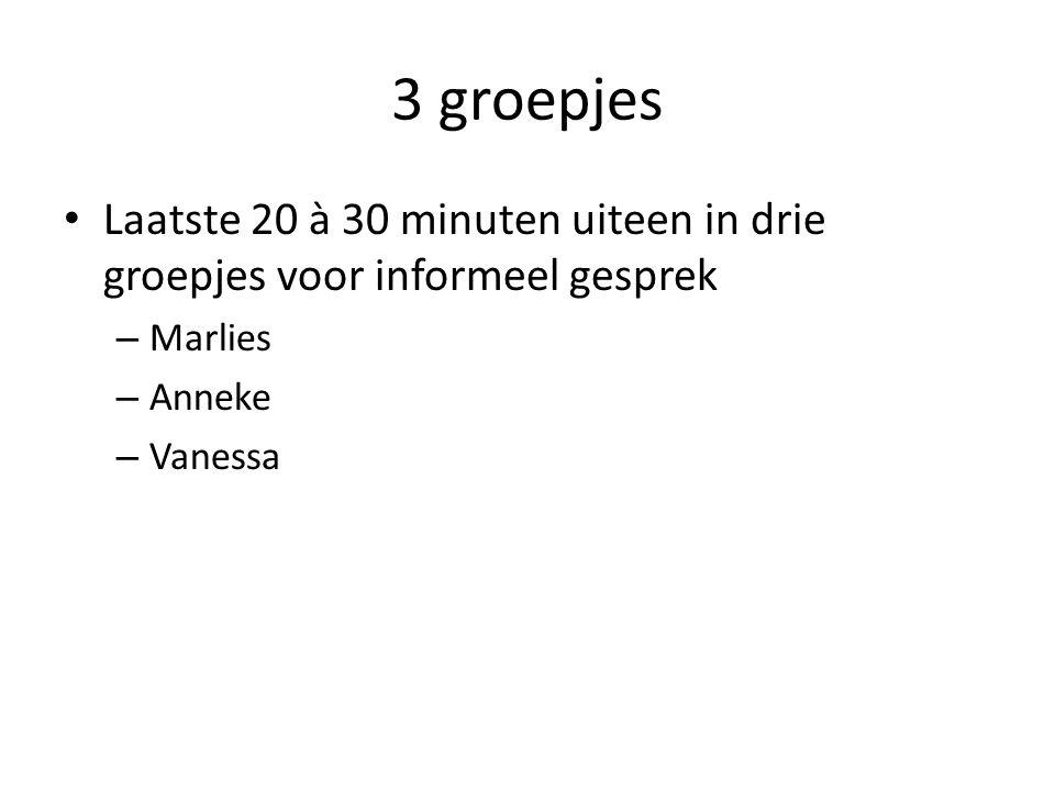 3 groepjes Laatste 20 à 30 minuten uiteen in drie groepjes voor informeel gesprek – Marlies – Anneke – Vanessa