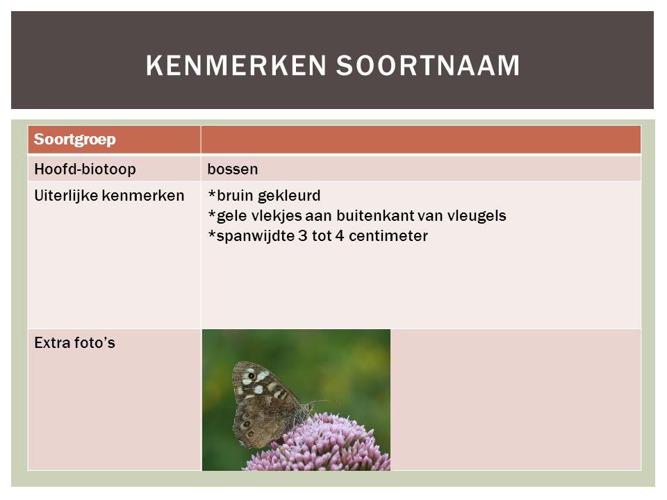 Soortgroep Hoofd-biotoopbossen Uiterlijke kenmerken*bruin gekleurd *gele vlekjes aan buitenkant van vleugels *spanwijdte 3 tot 4 centimeter Extra foto