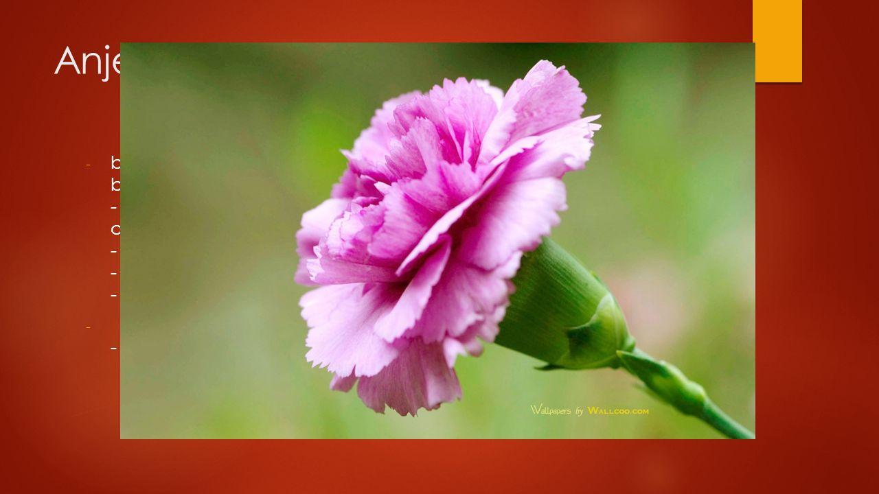 Anjerfamilie - bladeren enkelvoudig, gaafrandig, meestal ongesteeld bijna altijd tegenoverstaand op verdikte stengelknopen - bloem meerzijdig symmetri