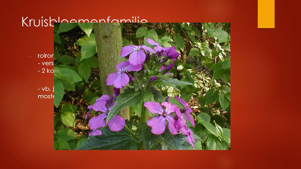 Kruisbloemenfamilie - rolronde stengel - verspreide bladstand - 2 korte en 4 lange meeldraden - - vb. judaspenning, broccoli, rode kool, bloemkool, ra