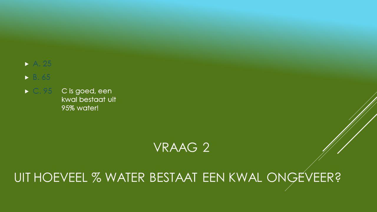 VRAAG 2 UIT HOEVEEL % WATER BESTAAT EEN KWAL ONGEVEER?  A. 25  B. 65  C. 95 C is goed, een kwal bestaat uit 95% water!