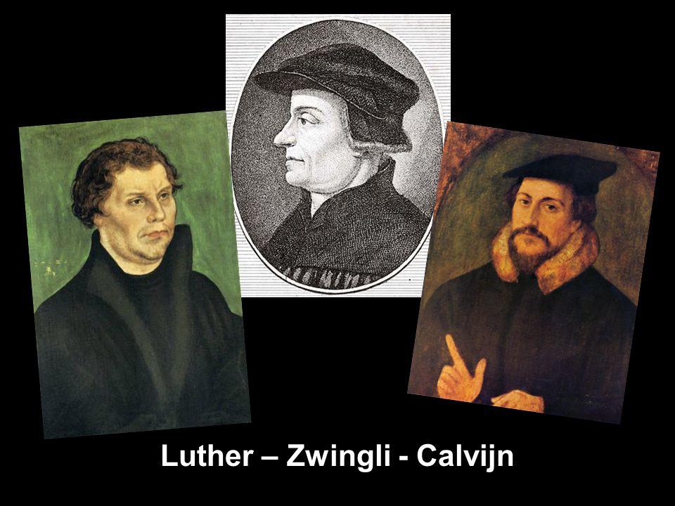 Luther – Zwingli - Calvijn