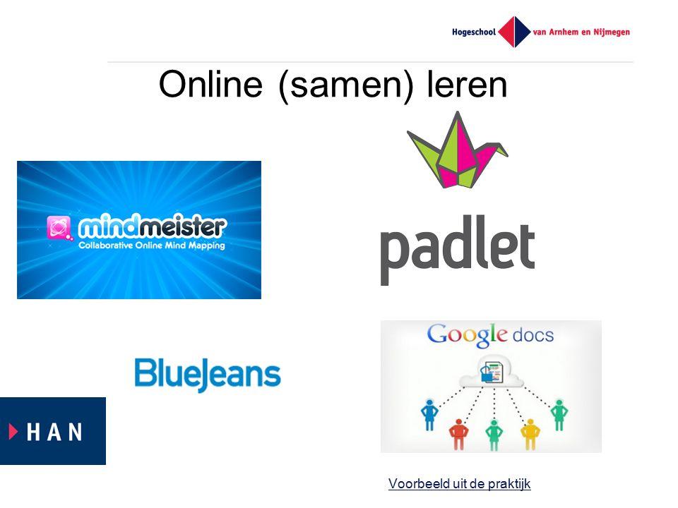 Online (samen) leren Voorbeeld uit de praktijk