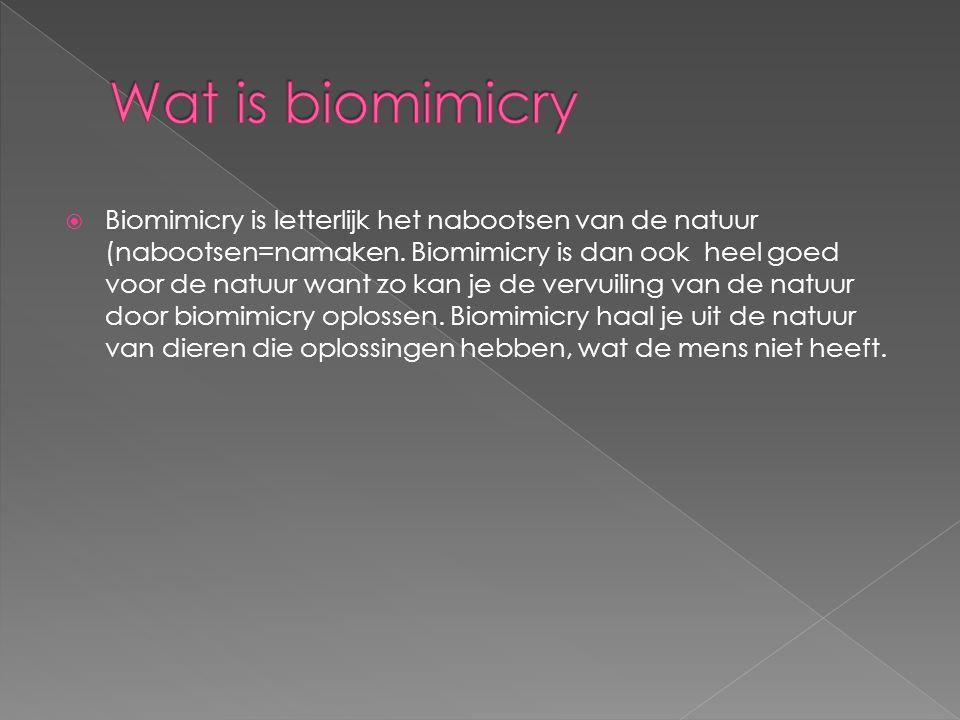  Biomimicry is letterlijk het nabootsen van de natuur (nabootsen=namaken.