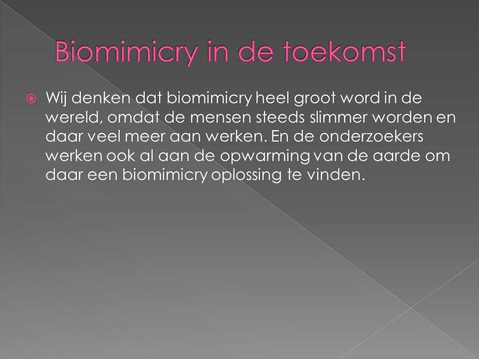  Wij denken dat biomimicry heel groot word in de wereld, omdat de mensen steeds slimmer worden en daar veel meer aan werken.