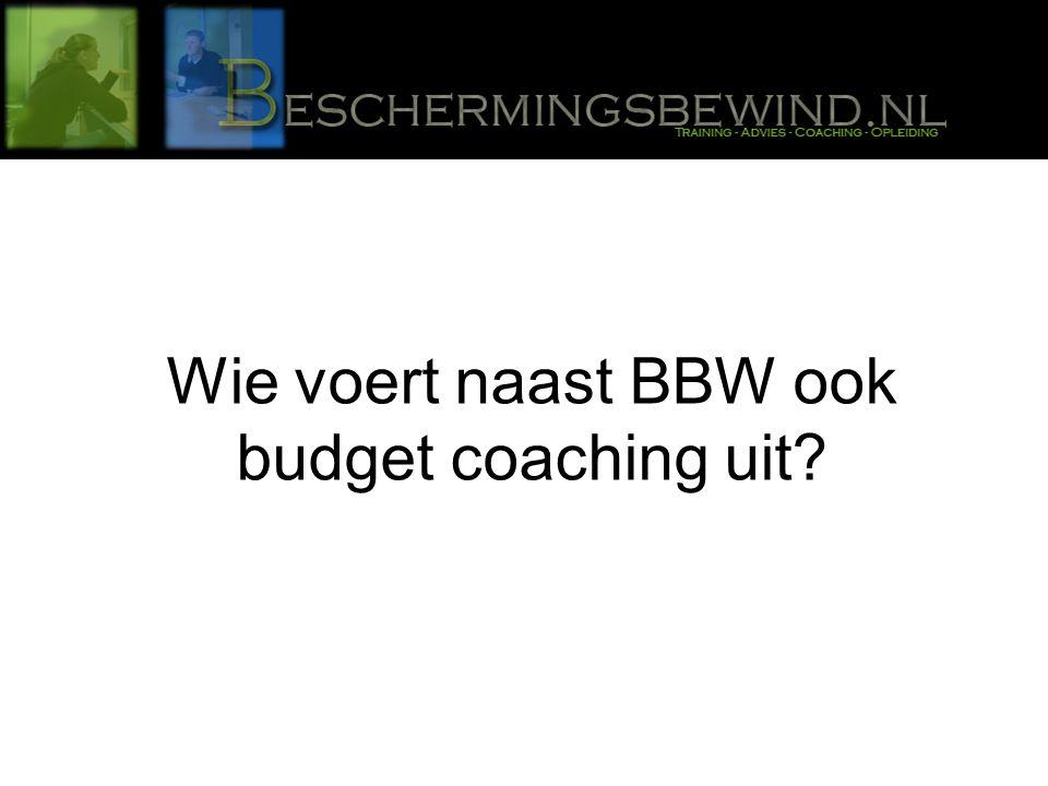 Wie voert naast BBW ook budget coaching uit