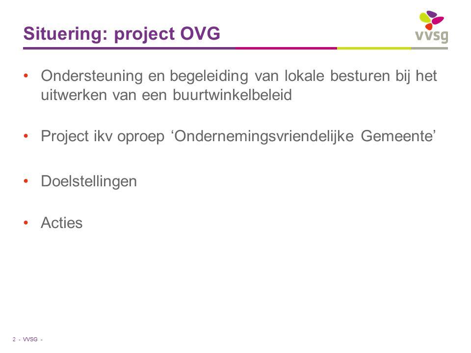 VVSG - Situering: project OVG Ondersteuning en begeleiding van lokale besturen bij het uitwerken van een buurtwinkelbeleid Project ikv oproep 'Onderne
