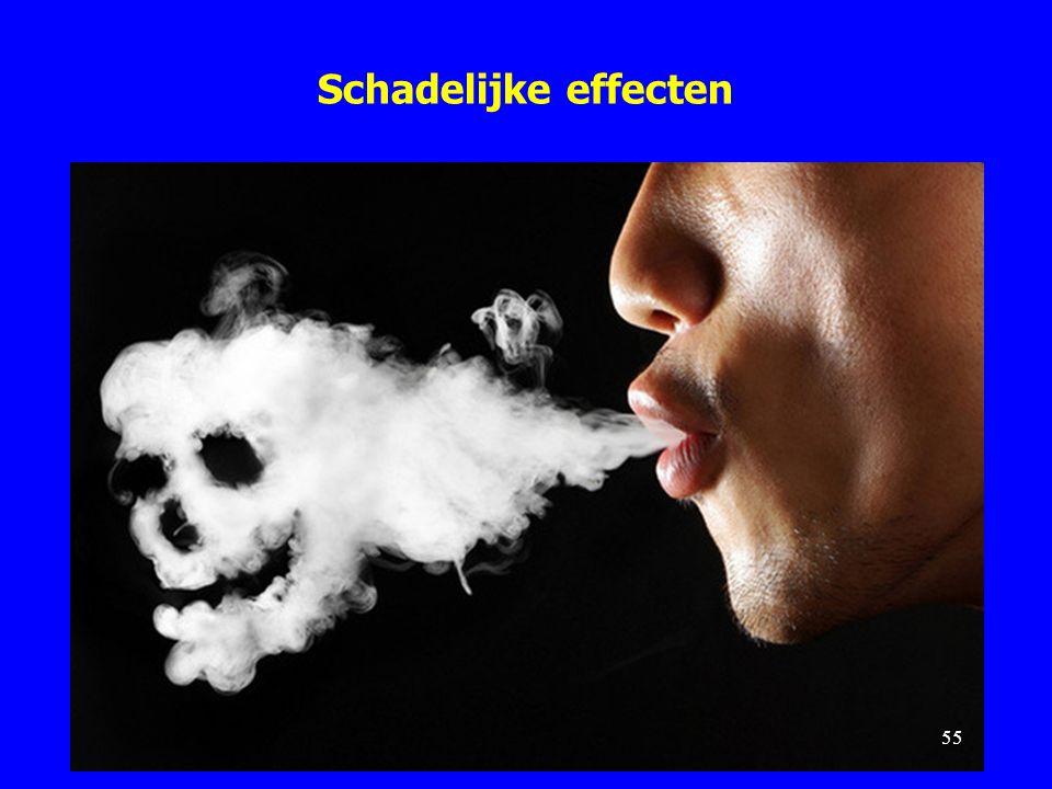 Schadelijke effecten 55
