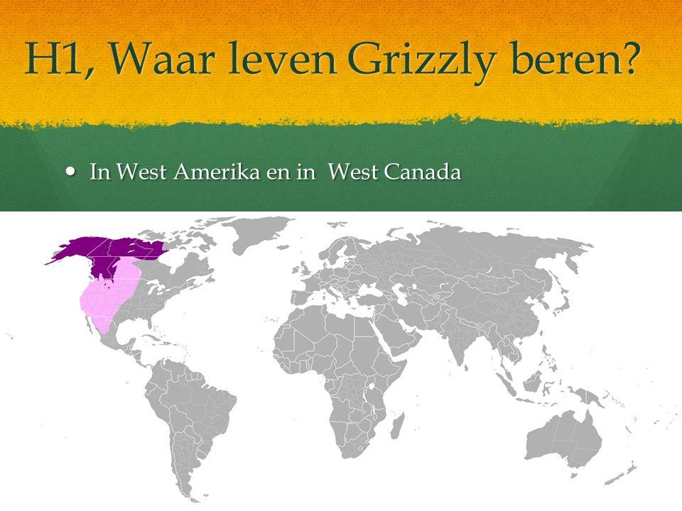 H1, Waar leven Grizzly beren? In West Amerika en in West Canada In West Amerika en in West Canada