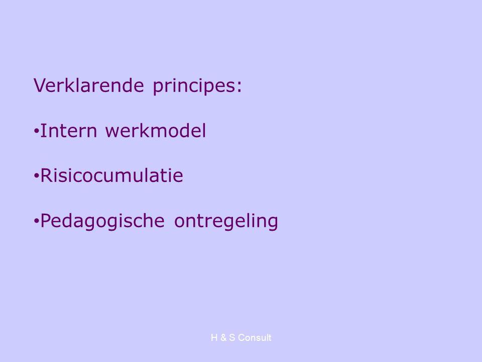 H & S Consult Verklarende principes: Intern werkmodel Risicocumulatie Pedagogische ontregeling