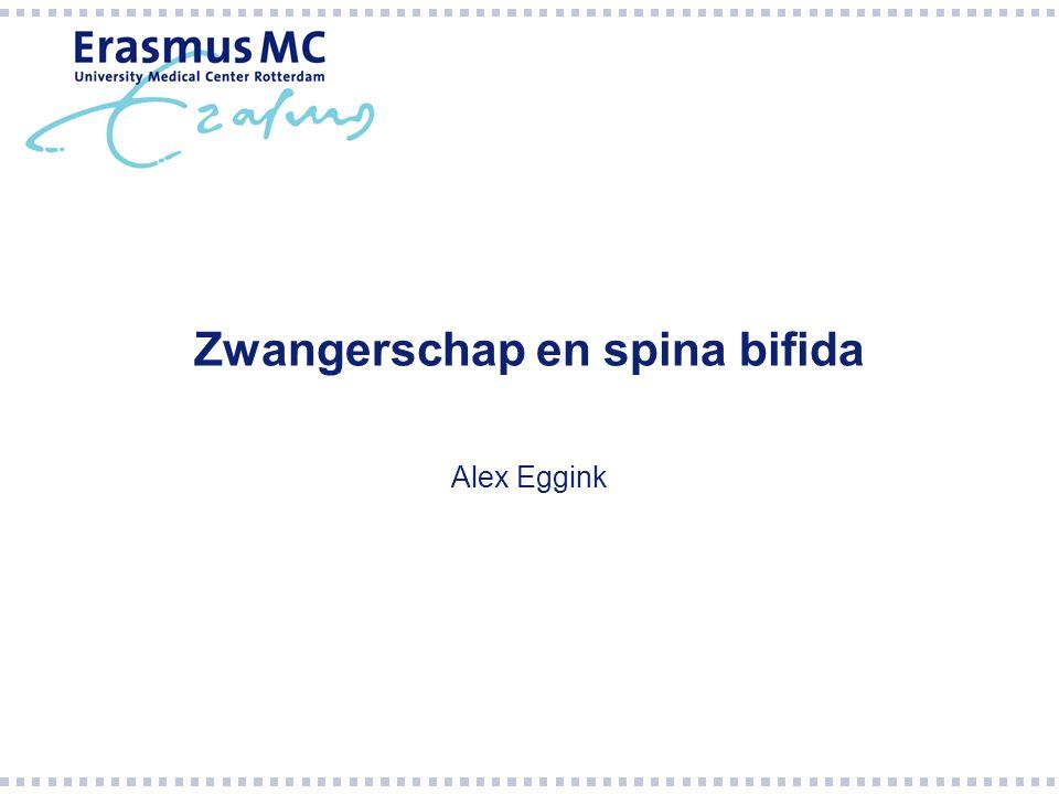 Zwangerschap en spina bifida Alex Eggink