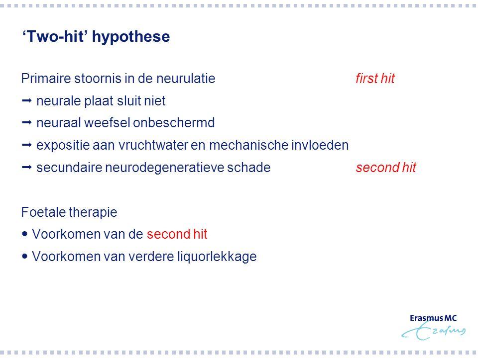 'Two-hit' hypothese Primaire stoornis in de neurulatiefirst hit  neurale plaat sluit niet  neuraal weefsel onbeschermd  expositie aan vruchtwater e