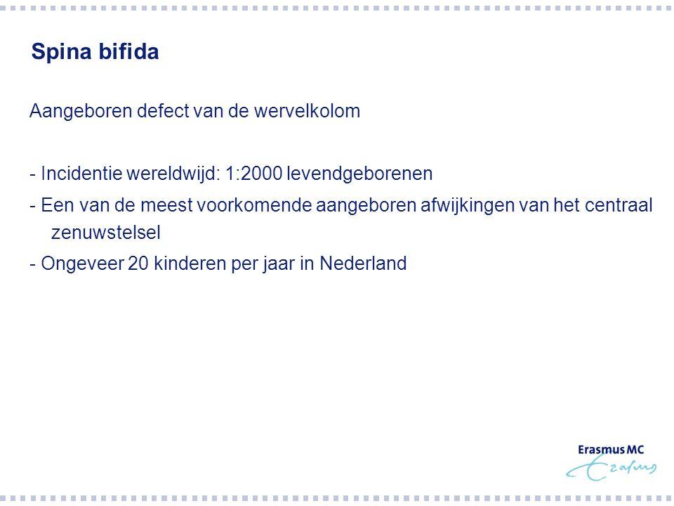 Spina bifida Aangeboren defect van de wervelkolom - Incidentie wereldwijd: 1:2000 levendgeborenen - Een van de meest voorkomende aangeboren afwijkinge