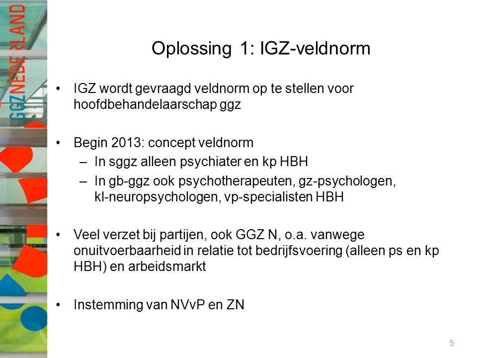 Oplossing 1: IGZ-veldnorm IGZ wordt gevraagd veldnorm op te stellen voor hoofdbehandelaarschap ggz Begin 2013: concept veldnorm –In sggz alleen psychiater en kp HBH –In gb-ggz ook psychotherapeuten, gz-psychologen, kl-neuropsychologen, vp-specialisten HBH Veel verzet bij partijen, ook GGZ N, o.a.