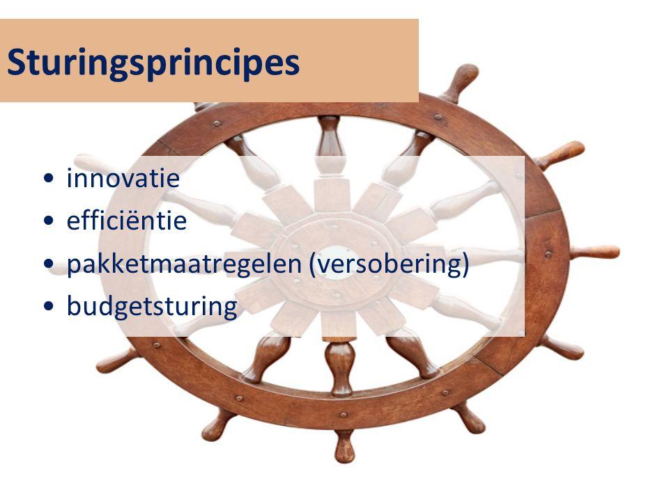 Sturingsprincipes innovatie efficiëntie pakketmaatregelen (versobering) budgetsturing