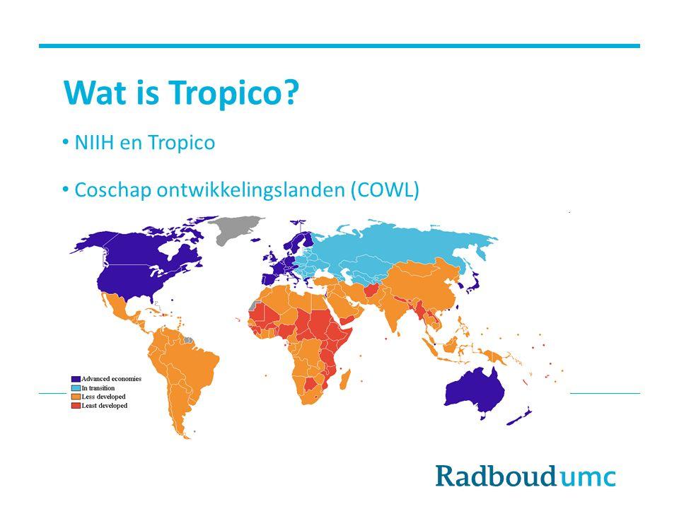 Wat doet Tropico.