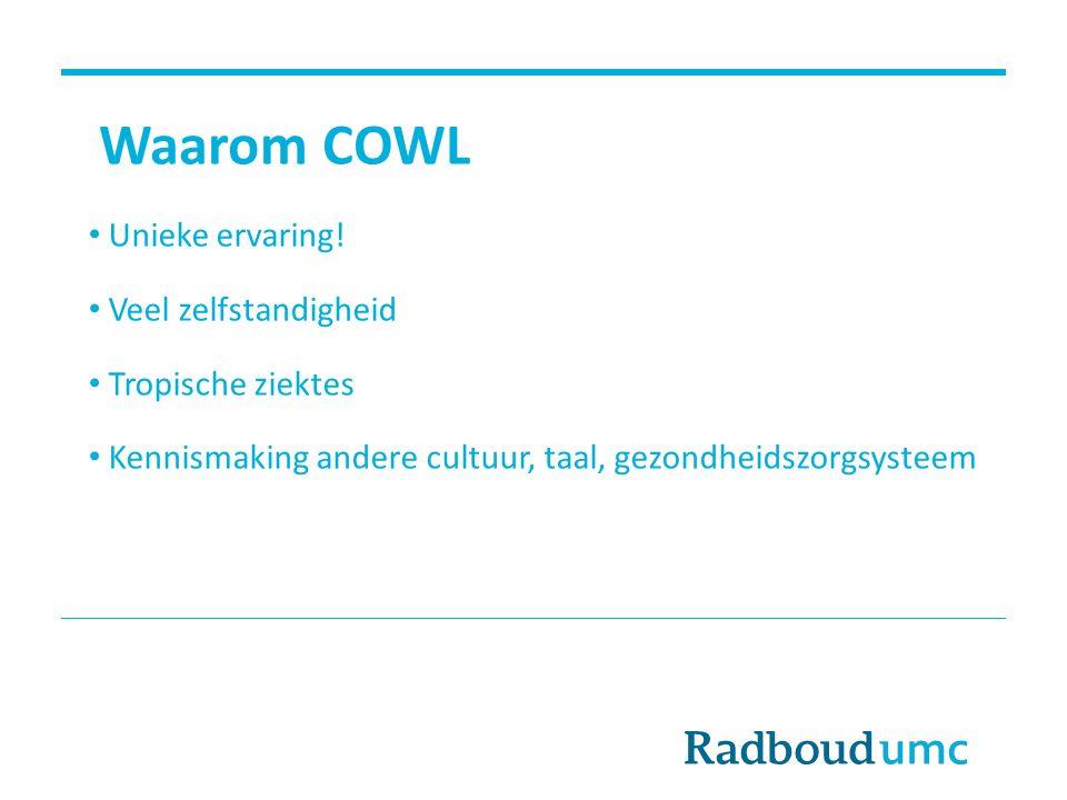 Waarom COWL Unieke ervaring! Veel zelfstandigheid Tropische ziektes Kennismaking andere cultuur, taal, gezondheidszorgsysteem