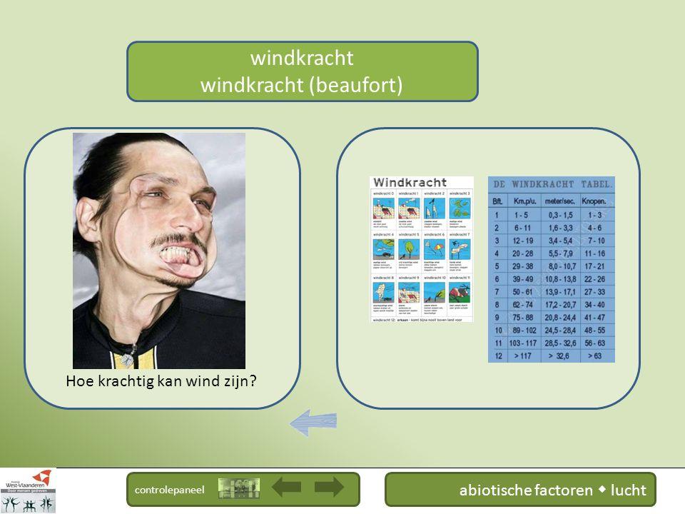 controlepaneel windzak windkracht Hoe meet men wind.