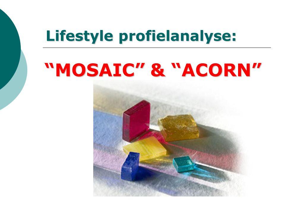 Lifestyle profielanalyse: MOSAIC & ACORN