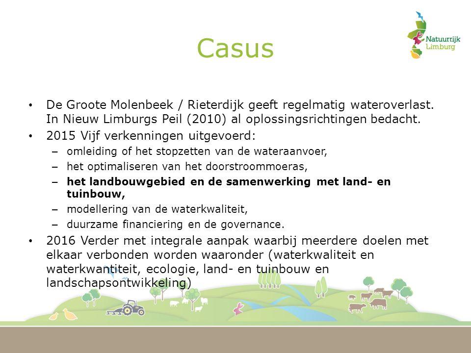 Casus De Groote Molenbeek / Rieterdijk geeft regelmatig wateroverlast.