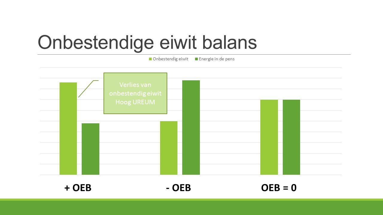 Onbestendige eiwit balans + OEB- OEBOEB = 0 Verlies van onbestendig eiwit Hoog UREUM