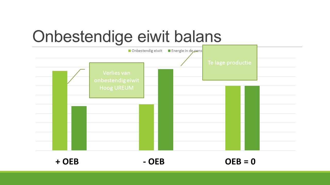 Onbestendige eiwit balans + OEB- OEBOEB = 0 Verlies van onbestendig eiwit Hoog UREUM Te lage productie